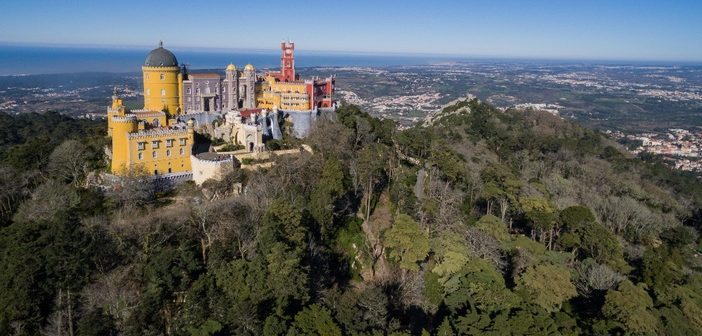 """Parques de Sintra vence World Travel Award para """"Melhor Empresa do Mundo em Conservação"""""""
