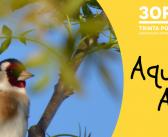 """16 de Junho – """"Aqui há Aves!"""" no Jardim do Mouchão, Tomar"""