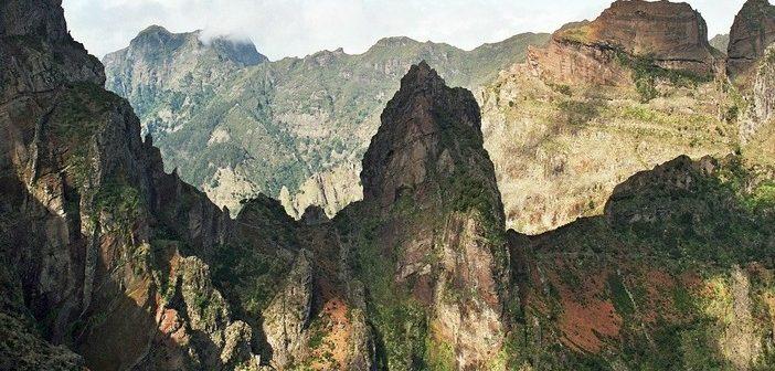 Nota negativa para o Governo Regional em matéria de proteção da natureza