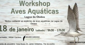 Workshop Aves Aquáticas