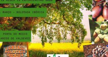 12 Meses 12 Experiências – Bolotada Ibérica