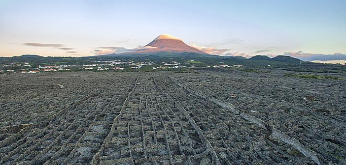Do vulcão da Ilha do Pico nasce o vinho Gruta das Torres 2018